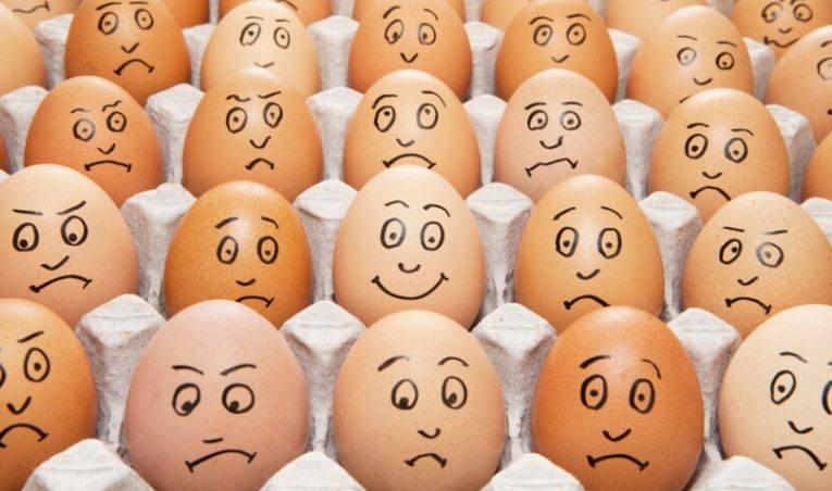 Compter les œufs ou surveiller la poule ?